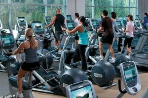 Asesores en Fitness y Deportes